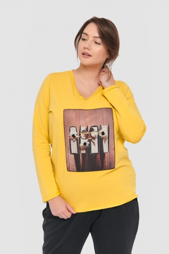 Bluza Dres. Wooden A676 Plus Size Misty Yellow